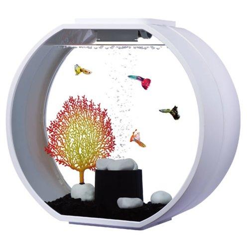Fish R Fun, Deco Fish Tank 20L White