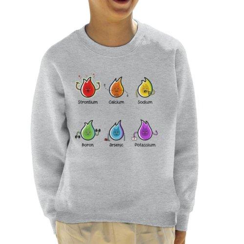 Flaming Science Elements Kid's Sweatshirt