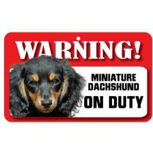 Long Haired Miniature Dachshund Pet Sign