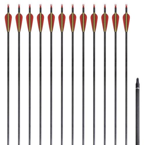"""Standard Recurve Bow Arrows 30"""" 0.76 cm Carbon 12 pcs"""