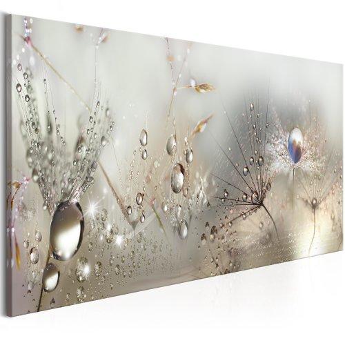 Canvas Print - Morning Song | Nature Canvas Print