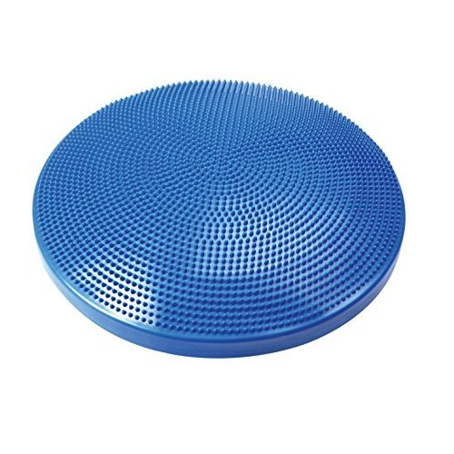 24 in. Dia. Balance Disc Cushion