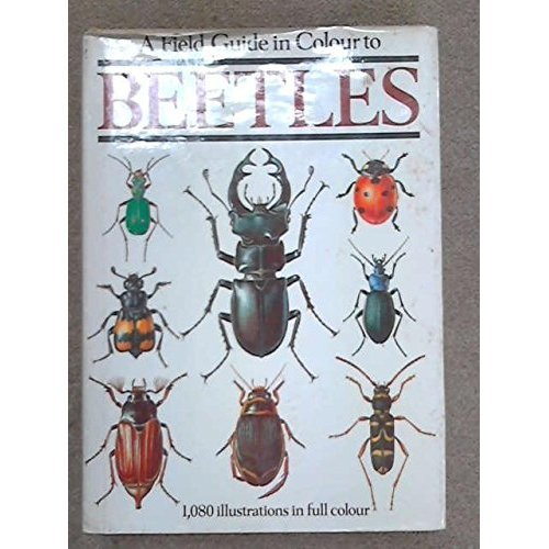 Field Guide in Colour to Beetles