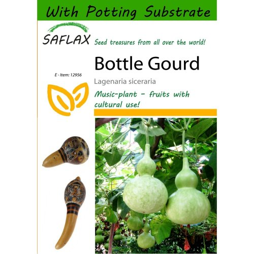 Saflax  - Bottle Gourd - Lagenaria Siceraria - 15 Seeds - with Potting Substrate for Better Cultivation