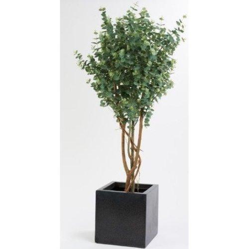 Artificial Eucalyptus Tree