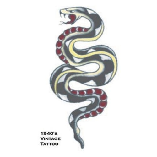 Costumes For All Occasions DF101 Tattoo Vintage Snake
