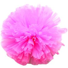 Set of 2 Team Sports Cheerleading Poms Match Pom Plastic Ring Pink