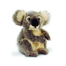 Keel Koala Bear Soft Toy 20cm