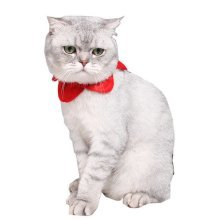 Pet Cat  Christmas Scarf Over Collar Slide on