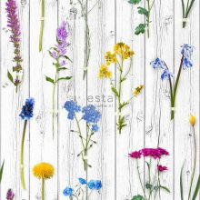 non-woven wallpaper XXL Wild flowers on wooden vintage planks Light warm gray, yellow, blue and fuchsia pink