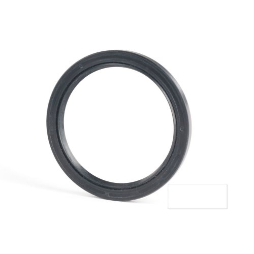 6x19x7mm Oil Seal Nitrile Double Lip With Spring 10 Pack