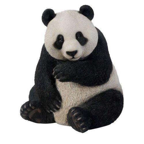 Vivid Arts plant pals Panda