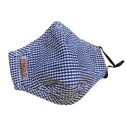 PM2.5 Adults's Mask For Anti-smog Of N95 Activated Carbon (Blue Checks)