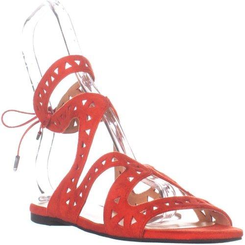 Daya by Zendaya Stella Flat Sandals, Red Micro, 6 UK