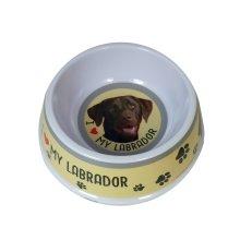 Chocolate Labrador Dog Bowl