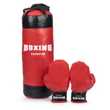 Boxing Champion Punch Bag
