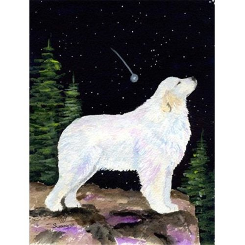 Carolines Treasures SS8471CHF Starry Night Great Pyrenees Canvas Flag - House Size, 28 x 40 in.