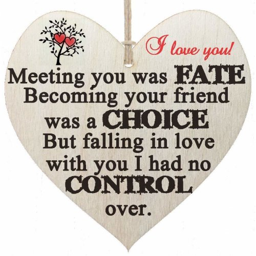 HandMadeSurprises I Love You - Meeting You Was a FATE Falling In Love With You I Had No Control - Wooden Hanging Plaque GIFT Sign - I Love You GIFT