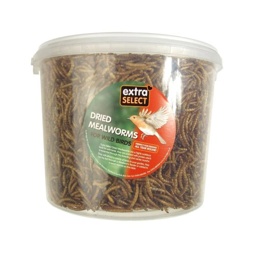 Extra Select Mealworms Tub 500ml