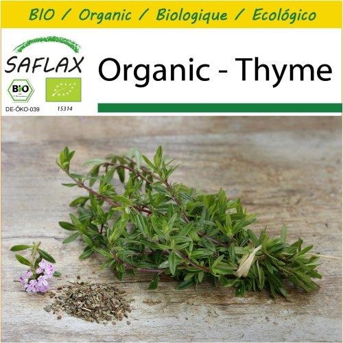 SAFLAX Potting Set - Organic - Thyme - 800 certified organic seeds  - Thymus