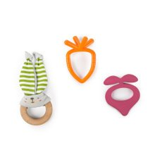 Bright Starts Simply Naturals Teether Set