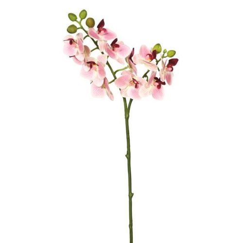 Real Touch Orchid-2 Branch 11 Heads Floral Stem, Pink