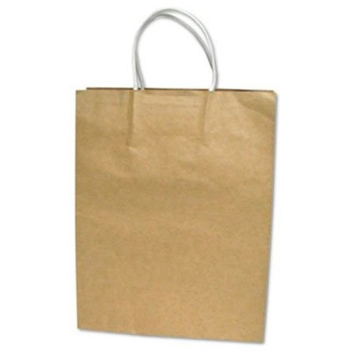 Consolidated Stamp 091566 Premium Large Brown Paper Shopping Bag, 50-Box