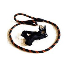 Durable Dog Collar Leash Strap For Puppy Pet,black/red