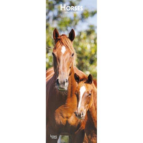 Horses 2019 Slim Calendar