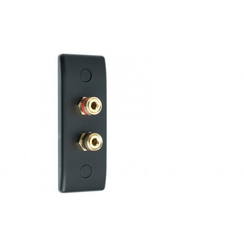 Matt Black Slimline Architrave 2 Binding Post Speaker Wall Plate - 2 Terminals - No Soldering Required