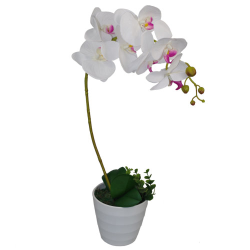 50cm Luxury Artificial Orchid Potted Plant | Curved Single Stem Orchid