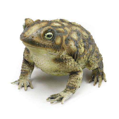 Bristol Novelty Rubber Toad