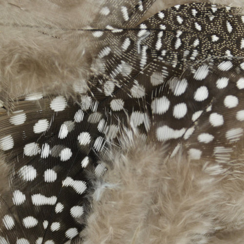 Guinea Fowl Feathers 4g-Natural