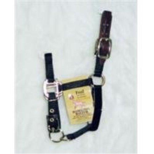 HAMILTON HALTER COMPANY Adjustable HALTER COMPANY with Leather Headpole