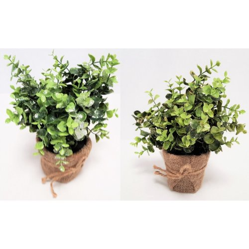 2 Artificial Gold/Silver Eucalyptus in Glitter in Hessian Wrapped Pot Christmas