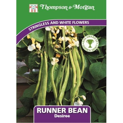 Thompson & Morgan - Vegetables - Runner Bean Desiree - 50 Seed