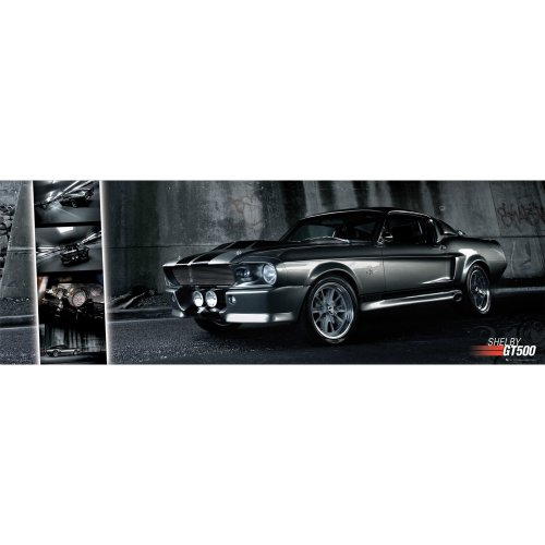 Ford Shelby Mustang Gt500 Door Poster